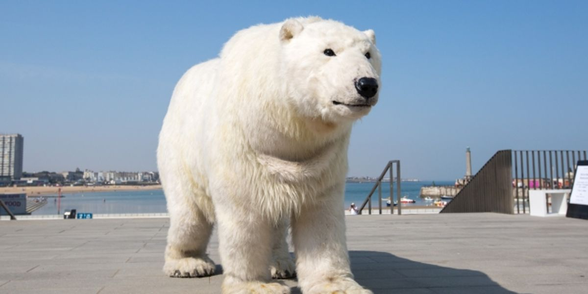 A Polar Bear to visit Canterbury Cathedral!
