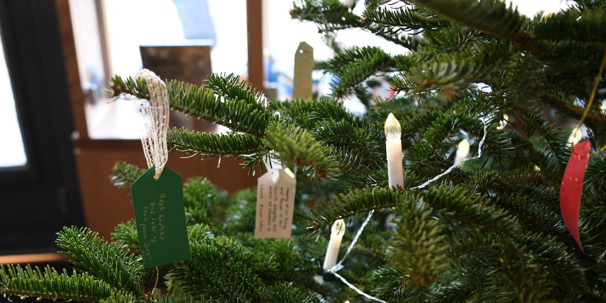 Cathedral's first Memory Tree is given blessing