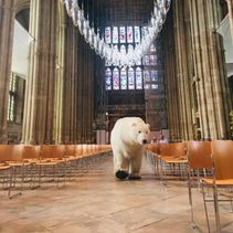 Paula Polar Bear visits Canterbury Cathedral