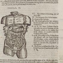 Mikrokosmographia (1631)